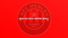 Mini Soccer Centre (MSC)