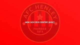 Mini Soccer Centre (MSC)