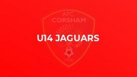 U14 Jaguars