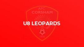 U8 Leopards