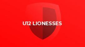 U12 Lionesses