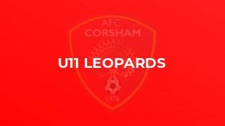 U11 Leopards