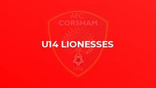 U14 Lionesses