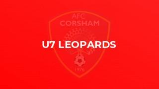 U7 Leopards