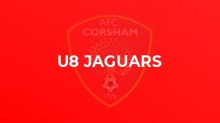 U8 Jaguars