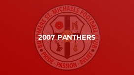 2007 Panthers