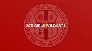 2011 Girls Wildcats