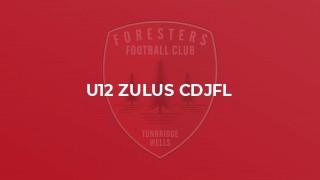 U12 Zulus CDJFL