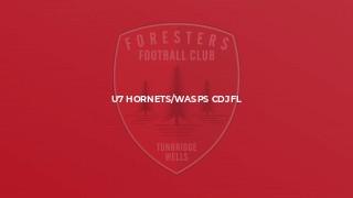 U7 Hornets/Wasps CDJFL