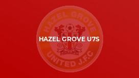 Hazel Grove U7s