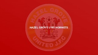 Hazel Grove U16s Hornets