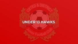 Under 13 Hawks