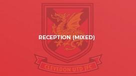 Reception (mixed)