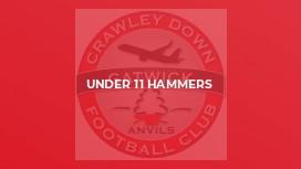 Under 11 Hammers